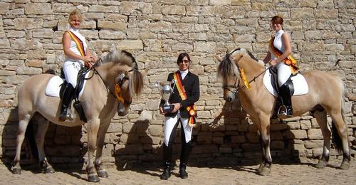 IGF Reginalgruppe Sachsen - Anhalt 2008 IGF = Interessengemeinschaft Fjordpferde e.V.