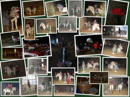 Weihnachtsreiten 15.Dezember 2012 um 15.00 Uhr