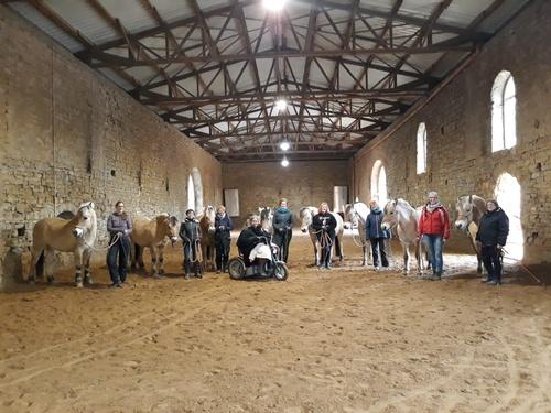 Horsemanship mit Silke Vallentin